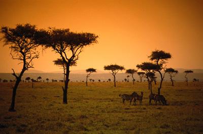 site de rencontre afrique francophone Rueil-Malmaison